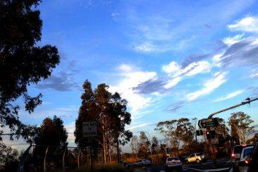 Kings Langley, Sydney