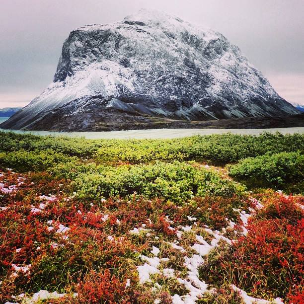 Greenland_Nature