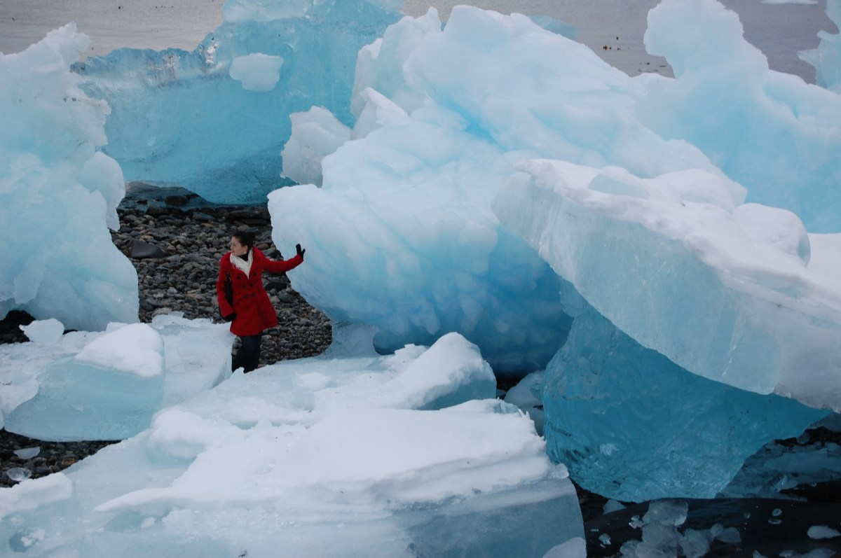 Moving from Greenland: when icebergs become trees